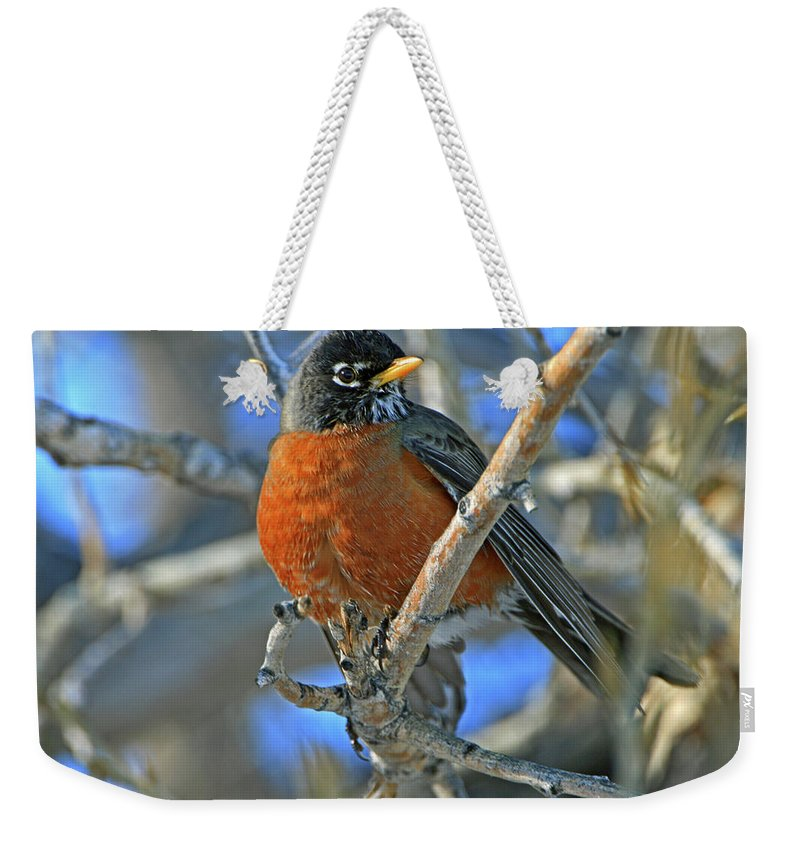 Robin Weekender Tote Bag featuring the photograph Robin by Scott Mahon