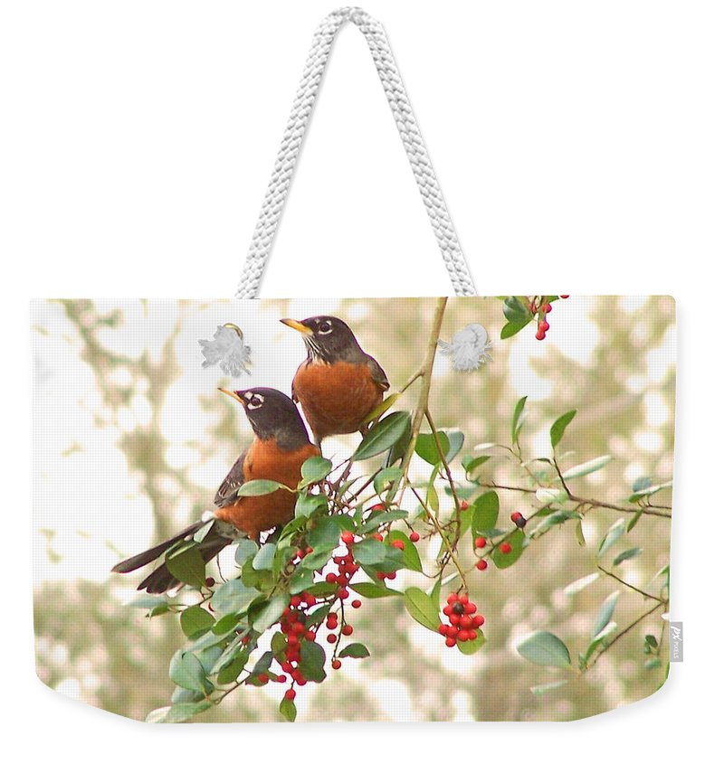 Nature Weekender Tote Bag featuring the photograph Robins In Holly by Peg Urban