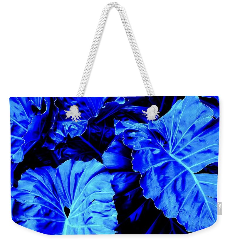 Blue Weekender Tote Bag featuring the photograph Romney Blue by Ian MacDonald
