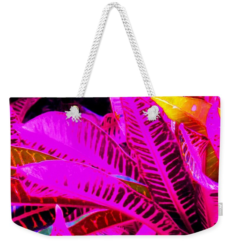 Pink Weekender Tote Bag featuring the photograph Romney Pink by Ian MacDonald