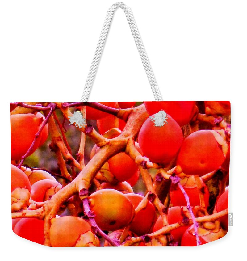 Red Weekender Tote Bag featuring the photograph Romney Red by Ian MacDonald