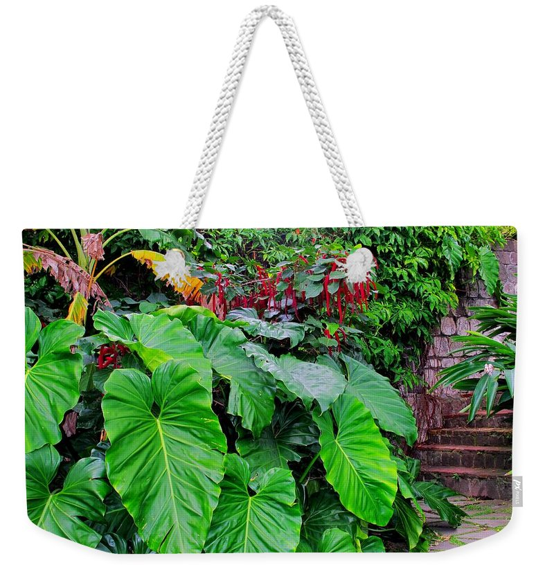 Lush Weekender Tote Bag featuring the photograph Romney Steps by Ian MacDonald