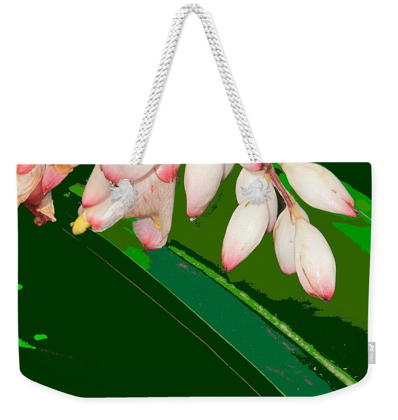 Flowers Weekender Tote Bag featuring the photograph Romney White by Ian MacDonald