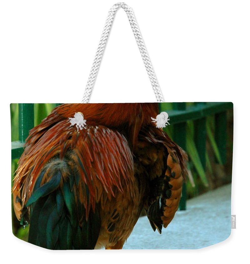 Rooster Weekender Tote Bag featuring the photograph Rooster By The Fence by Susanne Van Hulst