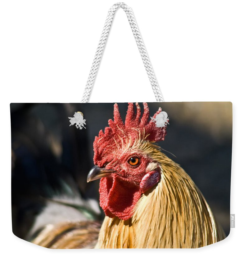 Rooster Weekender Tote Bag featuring the photograph Rooster Up Close And Personal by Douglas Barnett