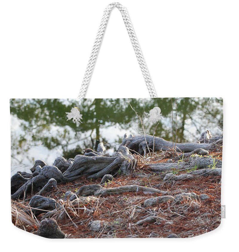 Roots Weekender Tote Bag featuring the photograph Rooted Lake Edge by Rob Hans