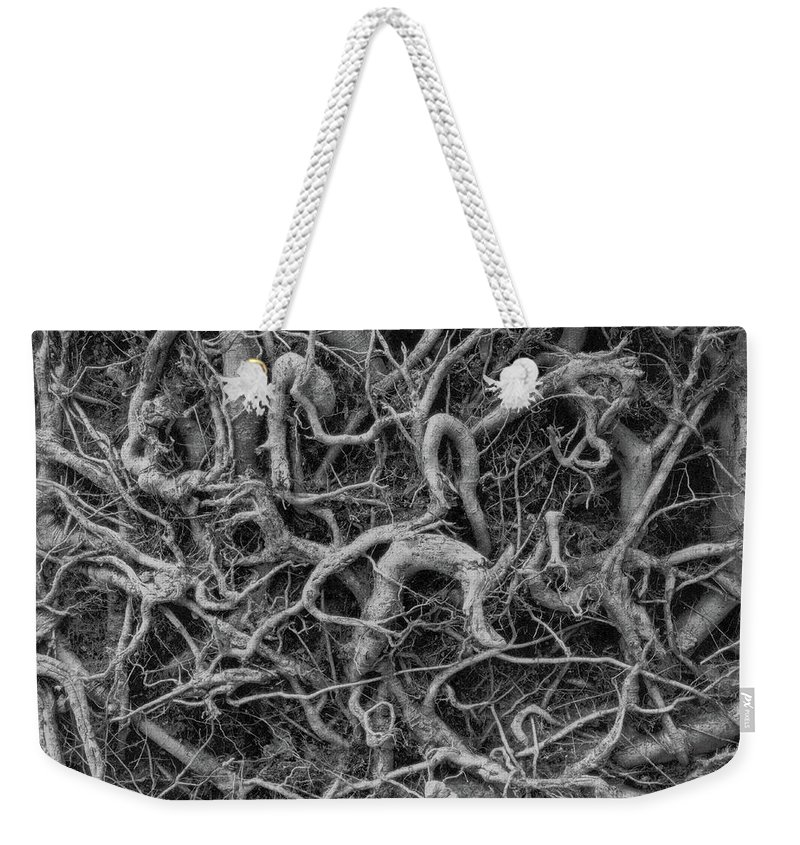 Weekender Tote Bag featuring the photograph Roots by Iain Duncan