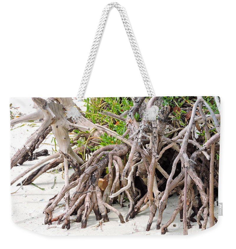 Mangrove Trees Weekender Tote Bag featuring the photograph Roots by Marilee Noland