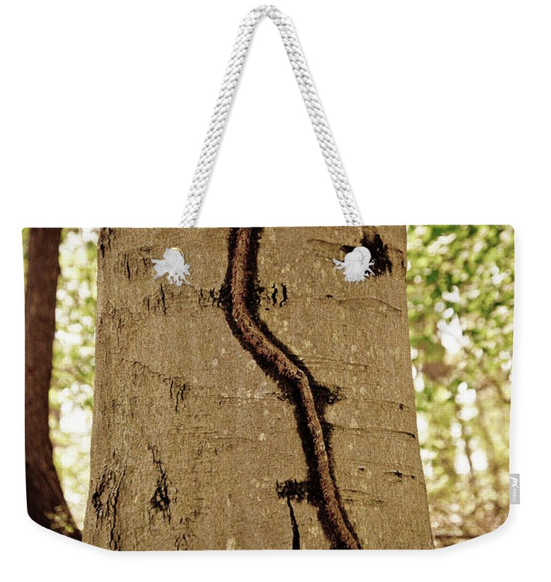 Weekender Tote Bag featuring the photograph Roots by Trish Tritz