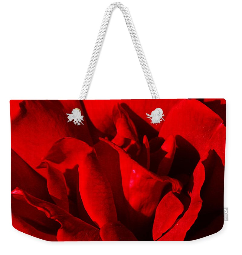 Rose Weekender Tote Bag featuring the photograph Rose 2 by Anthony Jones