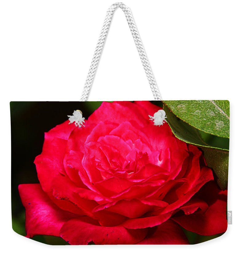Flower Weekender Tote Bag featuring the photograph Rose by Anthony Jones
