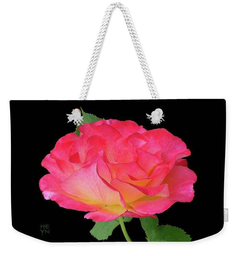 Cutout Weekender Tote Bag featuring the photograph Rose Blushing Cutout by Shirley Heyn