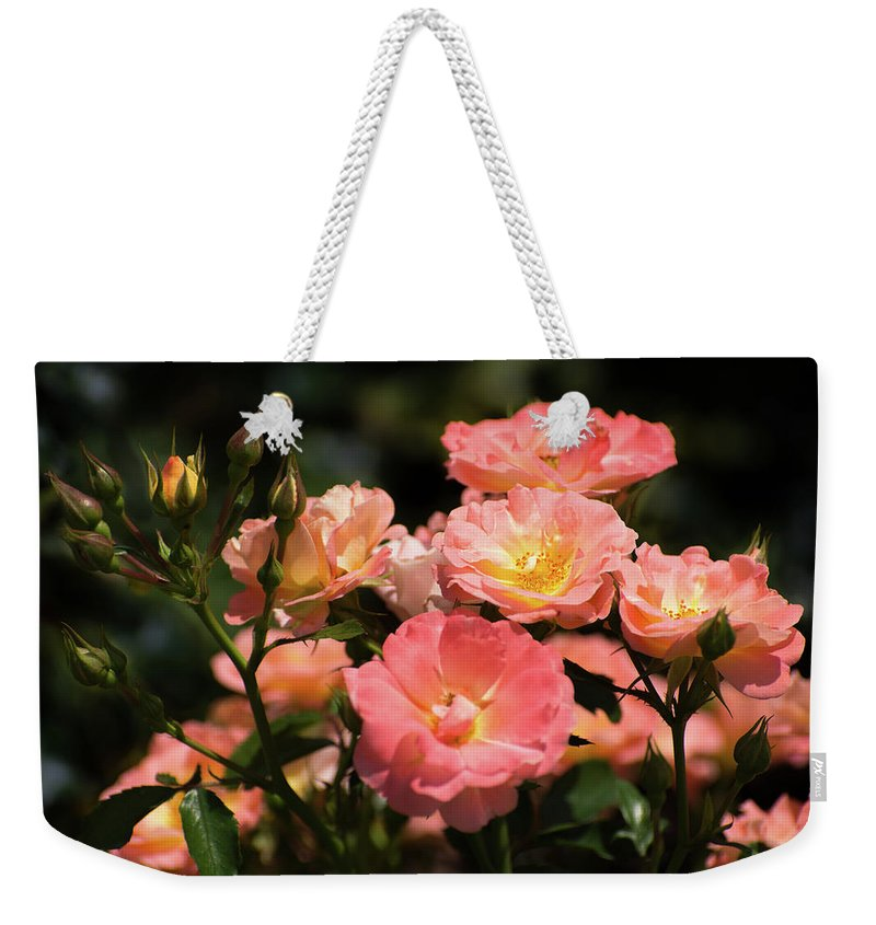 Roses Weekender Tote Bag featuring the photograph Rose Garden by Zina Stromberg
