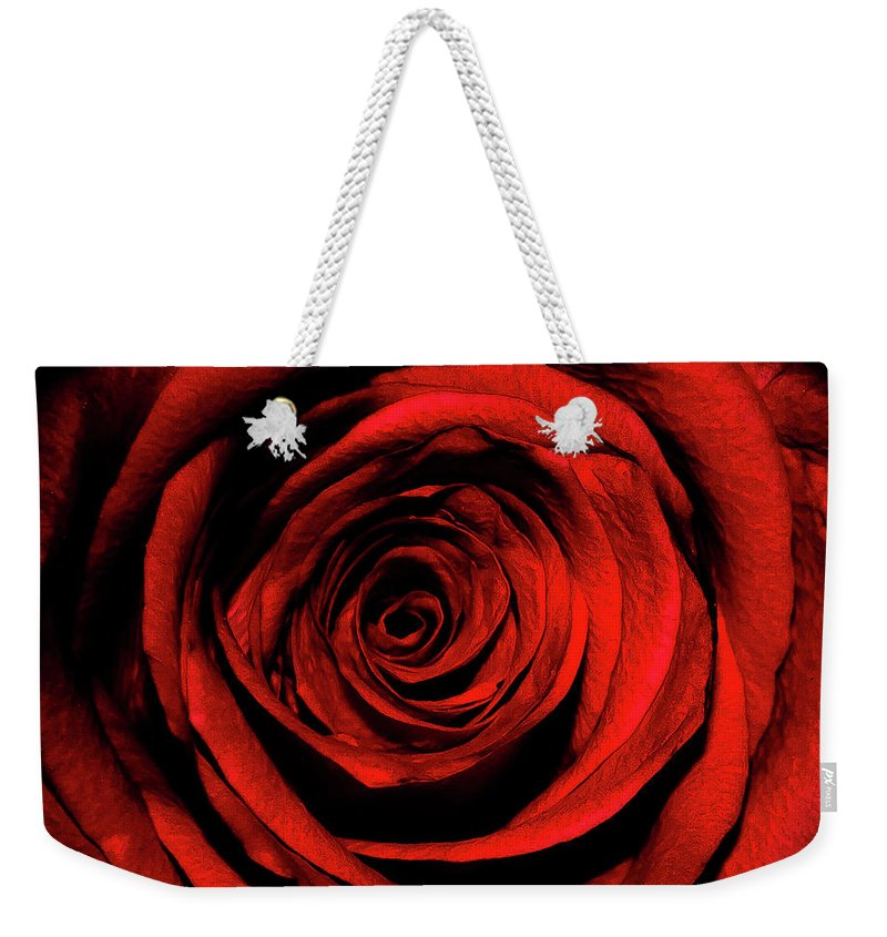 Rose Weekender Tote Bag featuring the photograph Rose by Lee Pirie