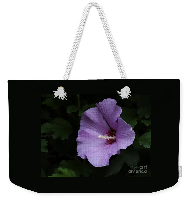 Flower Weekender Tote Bag featuring the photograph Rose Of Sharon - Hibiscus Syriacus by Ann Horn