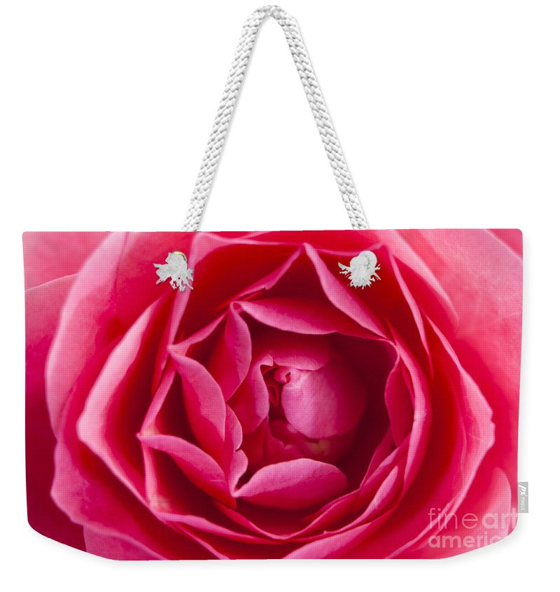 Rose Weekender Tote Bag featuring the photograph Rose by Wolfgang Steiner