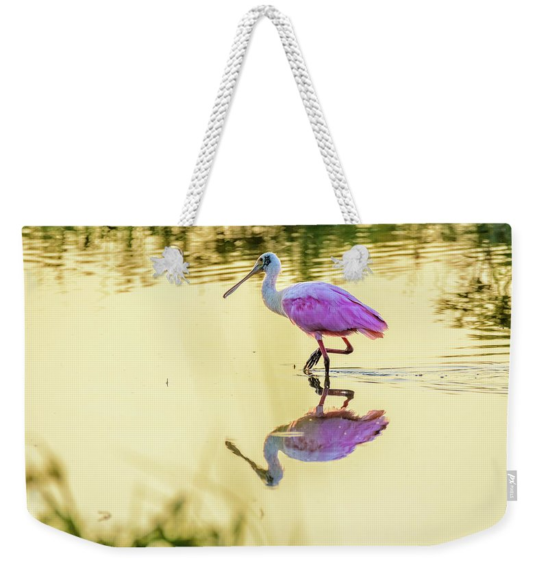Roseate Spoonbill At Sunrise Weekender Tote Bag featuring the photograph Roseate Spoonbill At Sunrise by Debra Martz