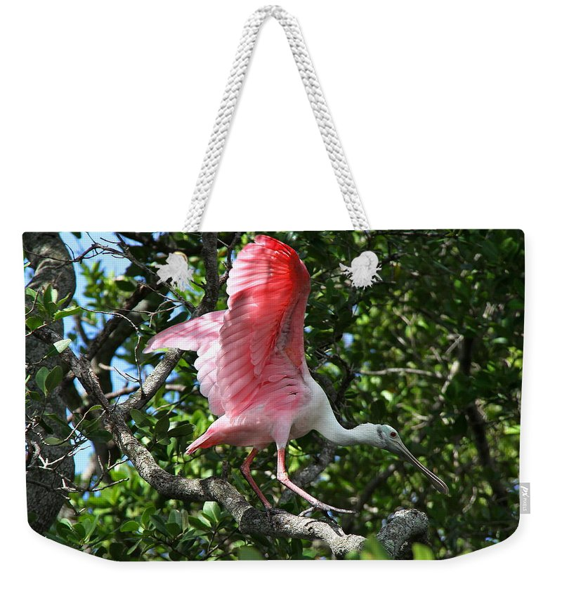 Spoonbill Weekender Tote Bag featuring the photograph Roseate Spoonbill In Flight by Barbara Bowen