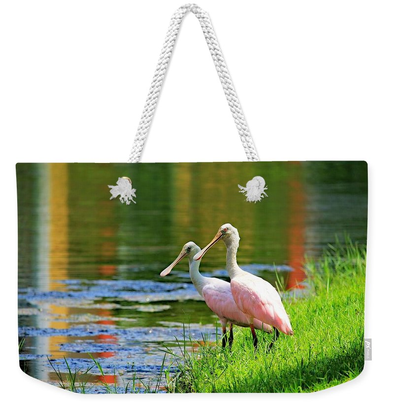 Birds Weekender Tote Bag featuring the photograph Roseate Spoonbills by Vicki Dreher