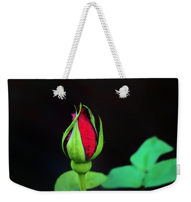 Rose Weekender Tote Bag featuring the photograph Rosebud by Bill Cannon