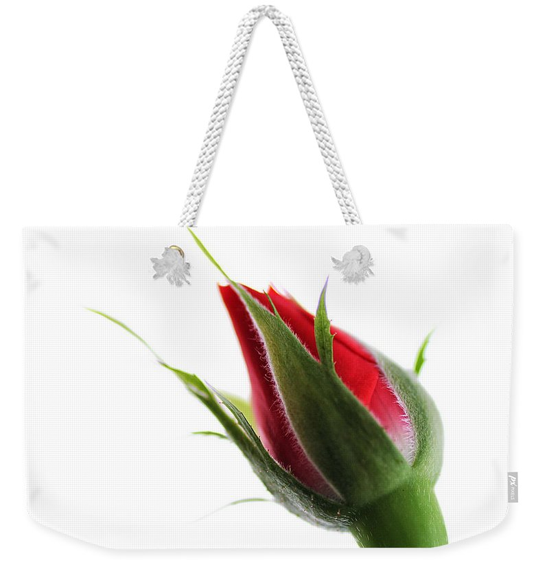 Flower Weekender Tote Bag featuring the photograph Rosebud On White by William Selander