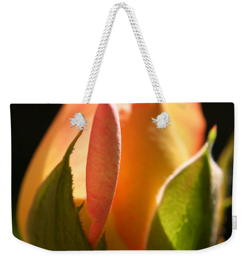 Rosebud Weekender Tote Bag featuring the photograph Rosebud by Ralph A Ledergerber-Photography