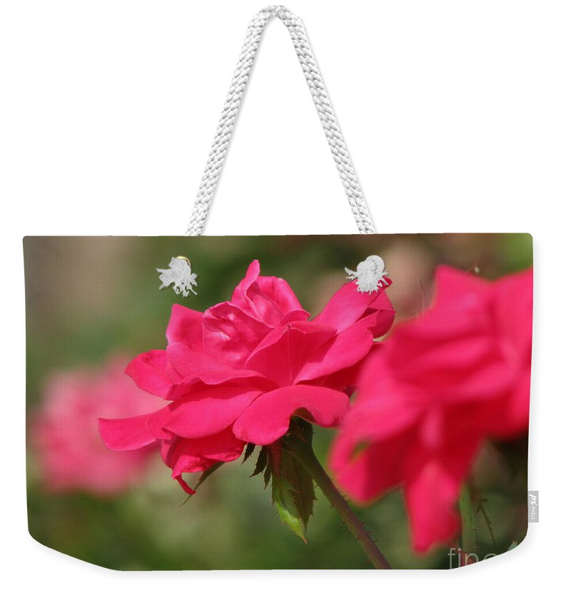 Rose Weekender Tote Bag featuring the photograph Roses by Amanda Barcon