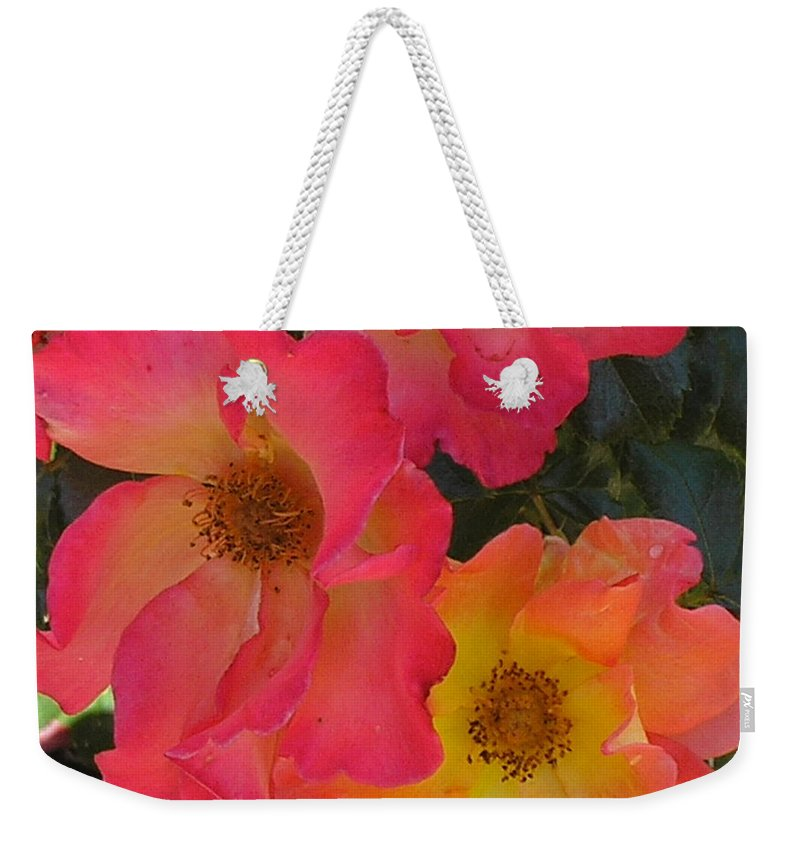 Rose Weekender Tote Bag featuring the photograph Roses by Dean Triolo