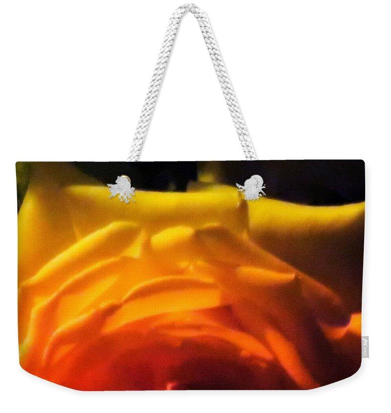 Diane M Dittus Weekender Tote Bag featuring the photograph Roses In Moonlight 11 by Diane M Dittus