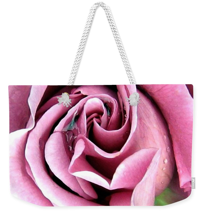 Romantic Weekender Tote Bag featuring the photograph Roses Roses by Will Borden