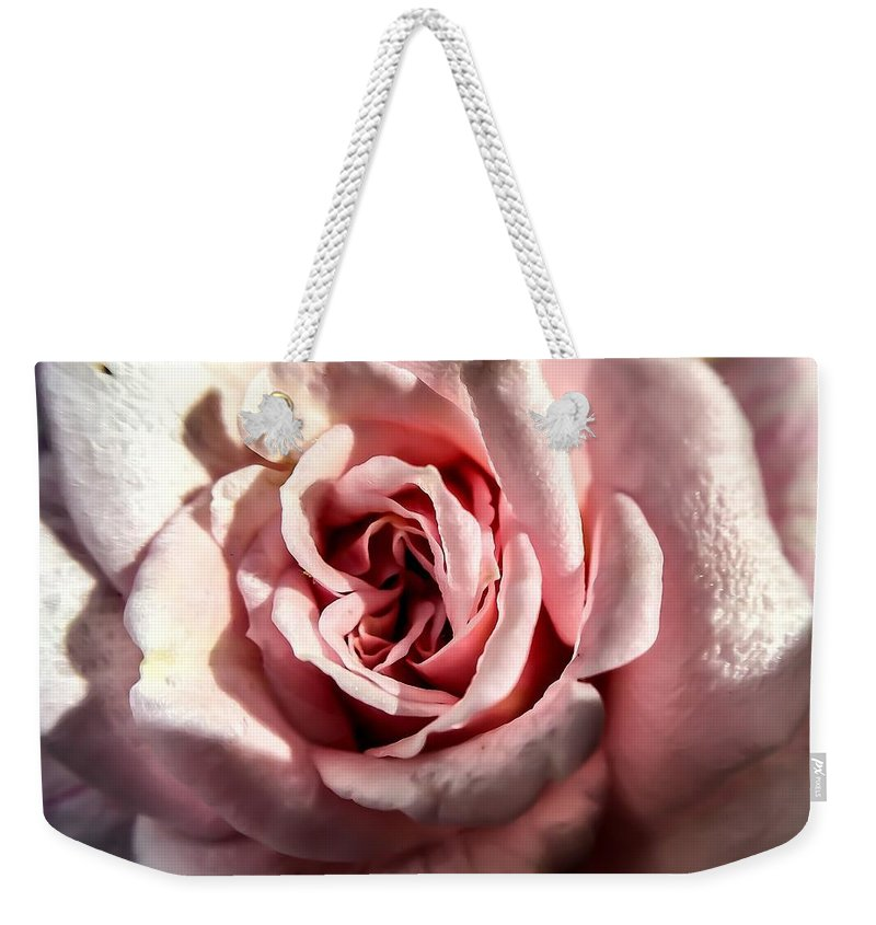 Roses Weekender Tote Bag featuring the photograph Rosy by Denise DuFresne