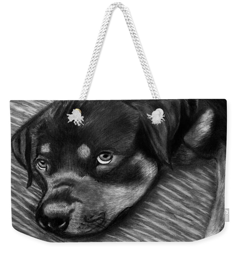 Rot Wilier Weekender Tote Bag featuring the drawing Rotty by Peter Piatt