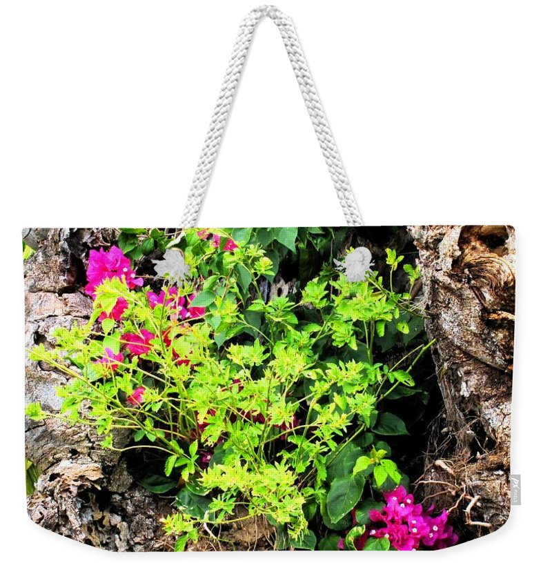 Flowers Weekender Tote Bag featuring the photograph Rough Beauty by Ian MacDonald