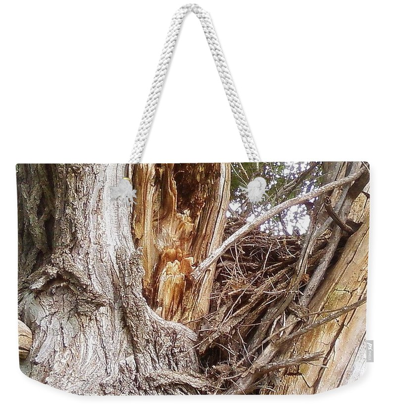 Tree Limbs Bark Weekender Tote Bag featuring the photograph Rough Tree by Cindy New