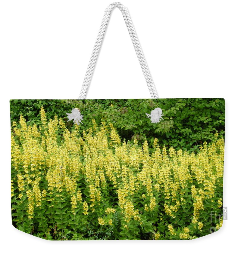 Flowers Weekender Tote Bag featuring the photograph Row Of Yellow Flowers by Mikhael van Aken