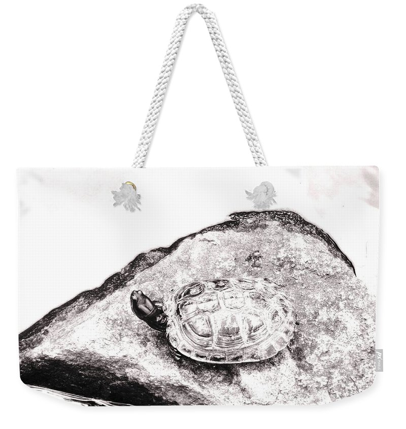 Pond Weekender Tote Bag featuring the photograph Rubbernecking Pond Turtle by Deborah Crew-Johnson