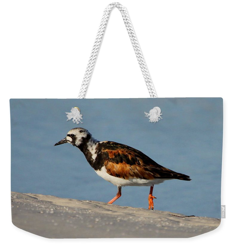 Ruddy Turnstone Weekender Tote Bag featuring the photograph Ruddy Turnstone by Barbara Bowen