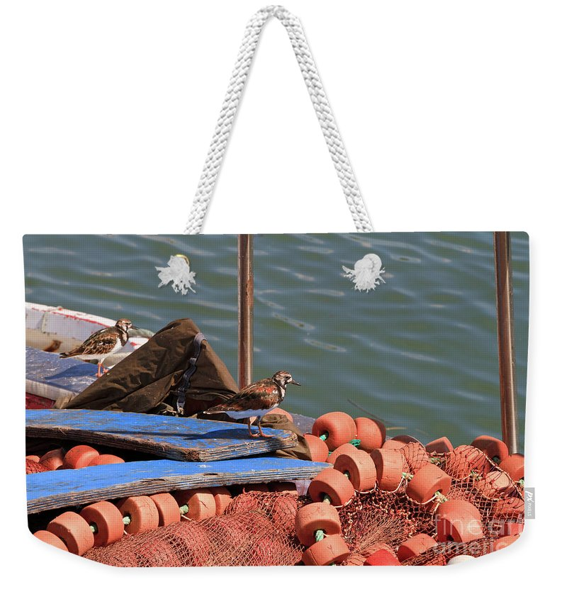 Ruddy Turnstone Weekender Tote Bag featuring the photograph Ruddy Turnstones Perching On Fishing Nets by Louise Heusinkveld
