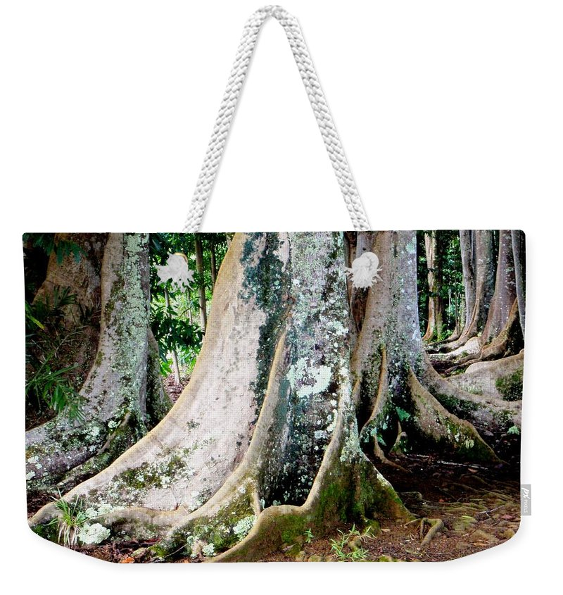 Rudraksha Weekender Tote Bag featuring the photograph Rudraksha 1 by Mary Deal