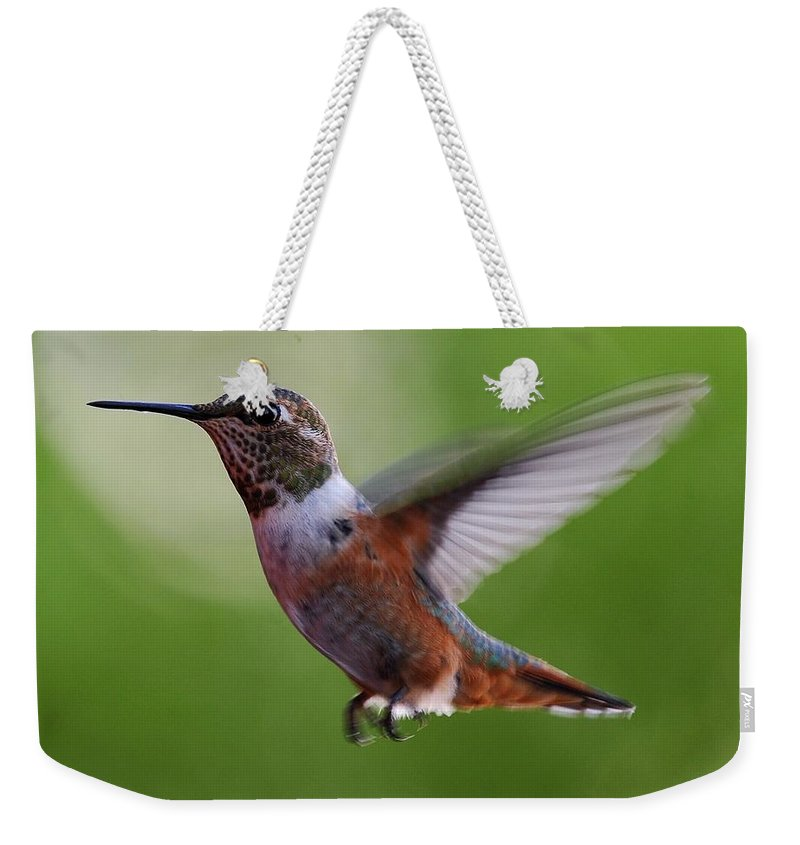 Hummingbirds Weekender Tote Bag featuring the photograph Rufus Hummingbird In Flight by Heidi Fickinger