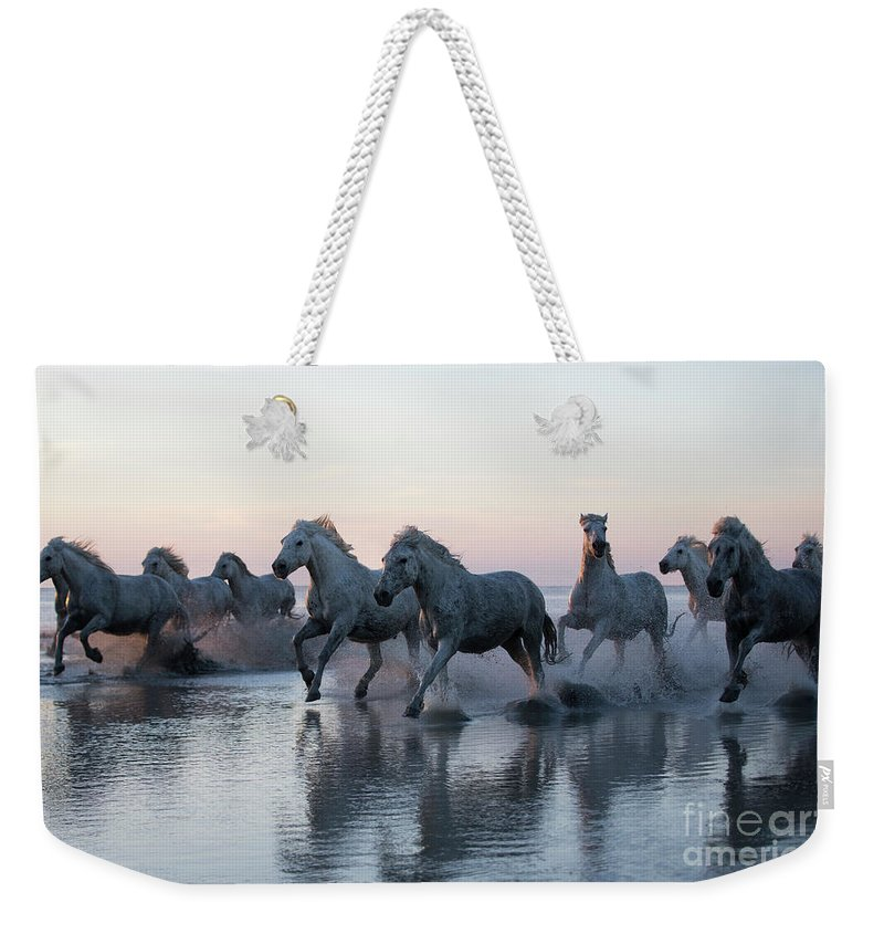 Camargue Weekender Tote Bag featuring the photograph Running Into The Sunset by Carol Walker
