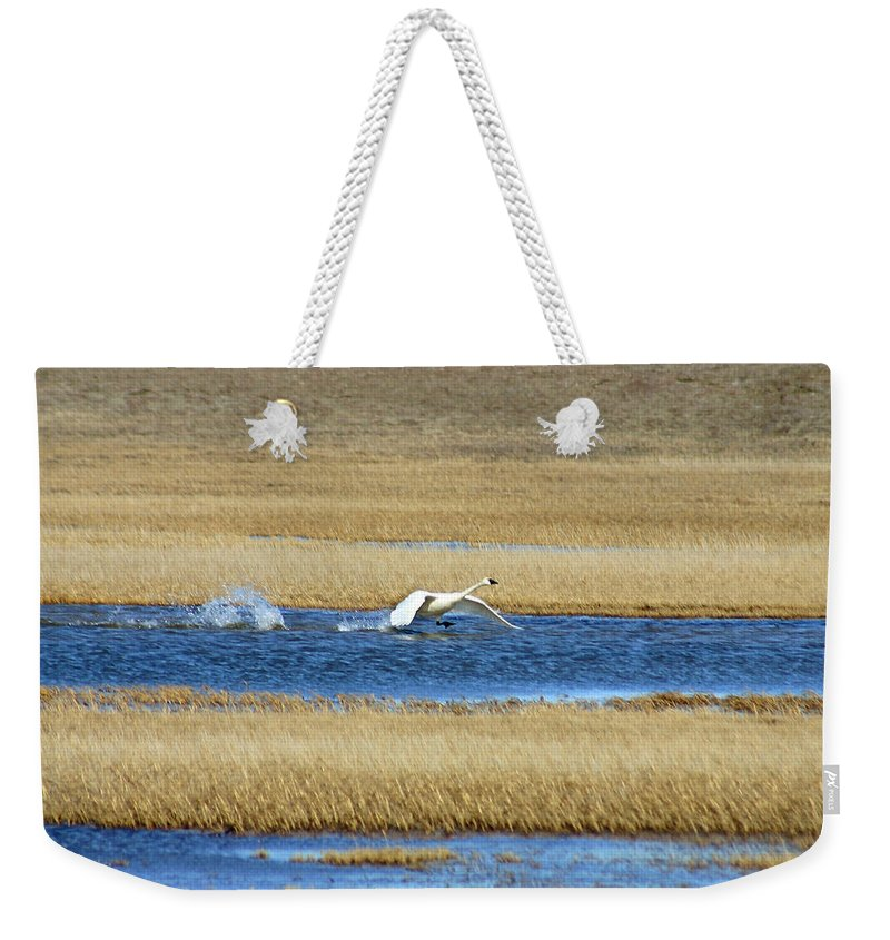 Swan Weekender Tote Bag featuring the photograph Running On Water by Anthony Jones