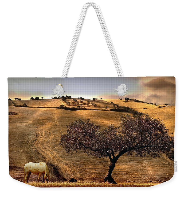Landscape Weekender Tote Bag featuring the photograph Rural Spain View by Mal Bray