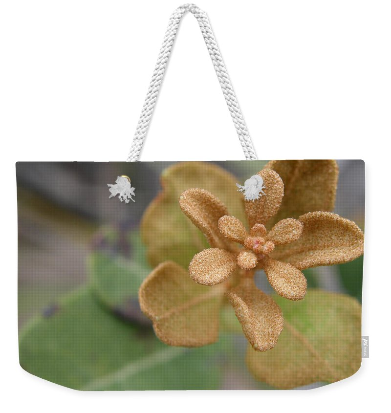 Plant Weekender Tote Bag featuring the photograph Rusty Lyonia by Kimberly Mohlenhoff