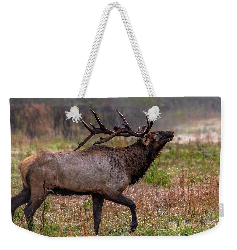 Bull Elk Weekender Tote Bag featuring the photograph Rutting Bull by Eric Albright