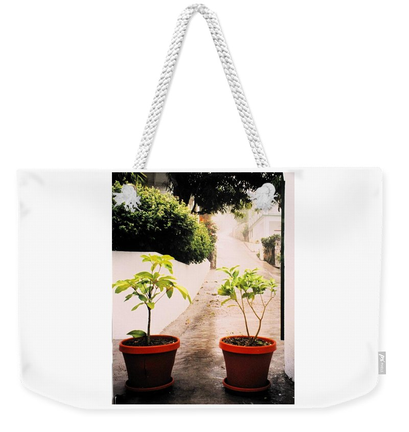 Saba Weekender Tote Bag featuring the photograph Saba by Ian MacDonald