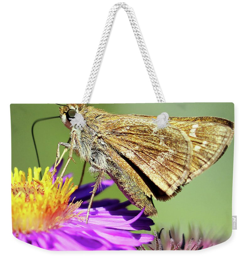 Female Weekender Tote Bag featuring the photograph Sachem Skipper by Jennifer Robin