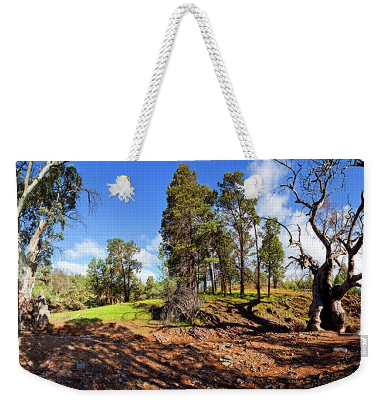 Sacred Canyon Flinders Ranges South Australia Australian Landscape Pano Panorama Outback Spring Weekender Tote Bag featuring the photograph Sacred Canyon, Flinders Ranges by Bill Robinson