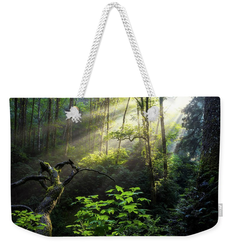 Light Weekender Tote Bag featuring the photograph Sacred Light by Chad Dutson