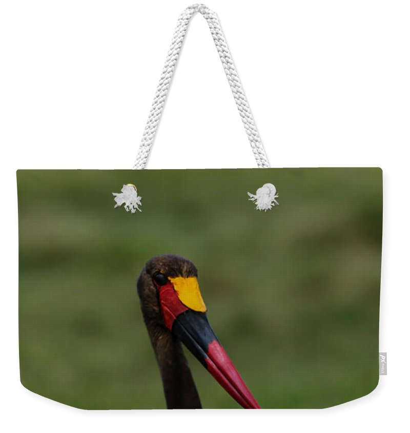 Birds Of Africa Weekender Tote Bag featuring the photograph Saddle Billed Stork by Ramabhadran Thirupattur